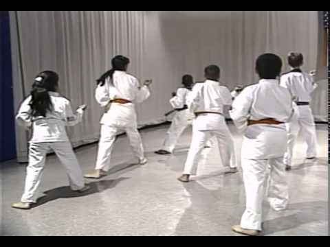 Episode 25: Tang Soo Do Class with Young Beginner Students - Blocks, Punches, Forms