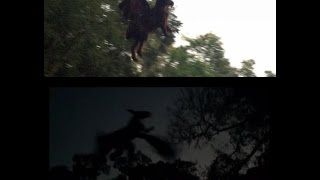 Cryptids and Monsters (NEWS):  Two NEW Jersey Devil sightings!  Video and photographic proof?