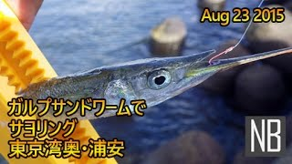 デイ東京湾奥浦安テトラ帯サヨリング[Halfbeak Fishing with Softbait in Urayasu TokyoBay]Aug 23 2015