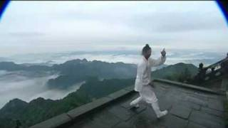 WUDANG Tai Chi 28 Movements by Wang Zhi Qiang