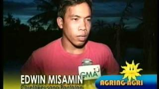 ARANGKADA GMA ILOILO (AGRING-AGRI: PANTAT RAISING)