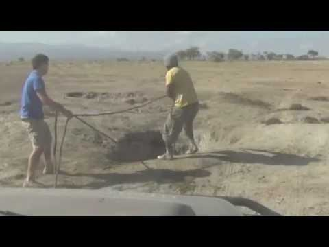 Baby elephant rescue will steal your heart.flv