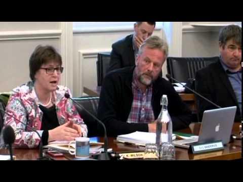 Dunedin City Council - Economic Development Committee - July 28 2013
