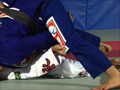 Leo Vieira BJJ - Butterfly guard jumping pass Image 1