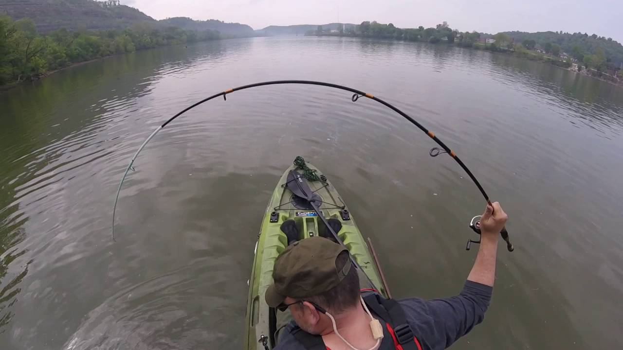 Ohio river small mouth bass fishing from my perception for Bass fishing in ohio