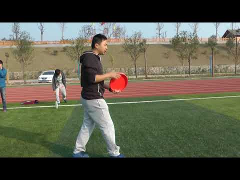 Frustrations and Joy  ''Learning  your first Frisbee Trick''