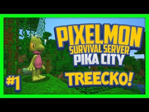 Pixelmon Server (Minecraft Pokemon Mod) Pika City Lets Play Ep.1 Treecko!