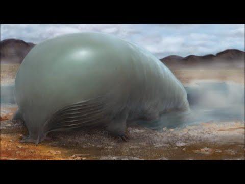 ¿Cómo Sería la Vida Extraterrestre Basada en Silicio?