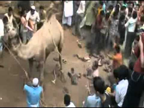 New 2011 Kasaragod News Comedy By Aukrcha Kasaragod.mpg video