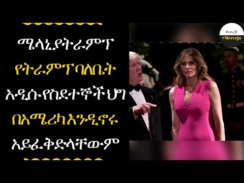 Melania Trump could have been deported and banned from the US