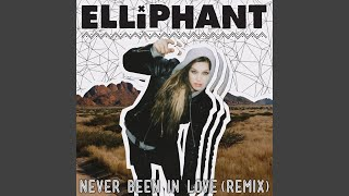 Never Been In Love Theodor Remix