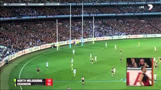 Elimination Final 2014 - North Melbourne v Essendon Highlights