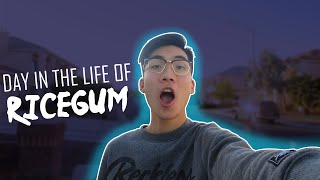 Day in a life with RiceGum