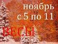 ВЕСЫ. ТАРО-ПРОГНОЗ на НЕДЕЛЮ с 5 по 11 НОЯБРЯ 2018г.