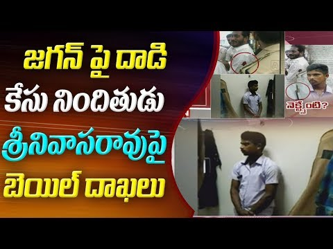 Lawyer Moves Bail Petition In Favour of Jagan Accused Srinivasa Rao | ABN Telugu