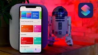 Siri Shortcuts: Tips and Favs from the Experts!
