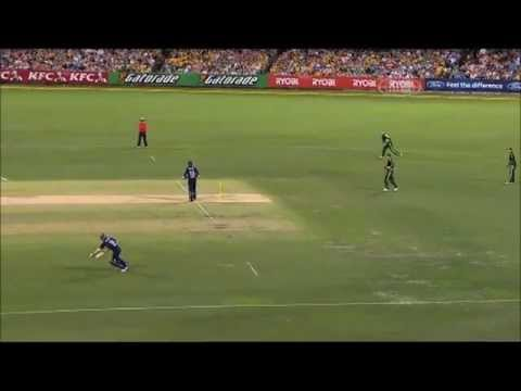 Funny Cricket By Australia video