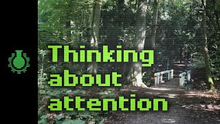 Thinking About Attention -- Walk with Me