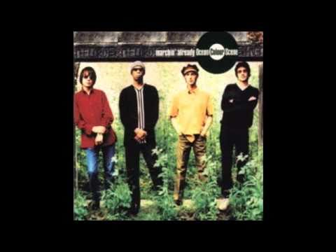 Ocean Colour Scene - Alibis