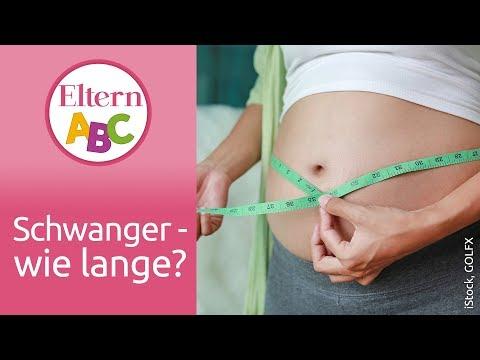 Wie lange dauert eine Schwangerschaft? | Schwangerschaft | Eltern ABC | ELTERN