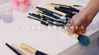 HOW TO CLEAN MAKEUP BRUSHES | dahyeshka