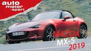 Mazda MX-5 (2019): Kann man ihm alles verzeihen? - Vorfahrt (Review) | auto motor und sport