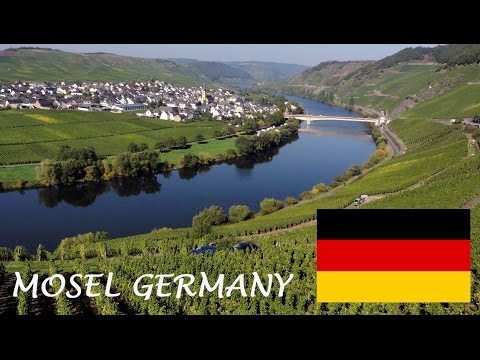Mosel Wines - German Riesling Wine from Moselle Valley - Germany wine tourism
