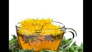 DANDELION FLOWER TEA BENEFITS: Health Benefits | Side Effects