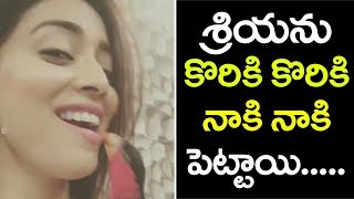 Shriya Saran Shocking Behavior With Her Pet
