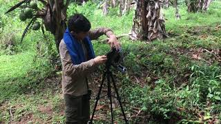Large Format Film Photography in the Jungle
