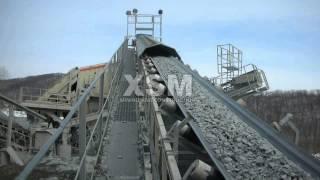 Gold Mining Process Control Using Cyanide