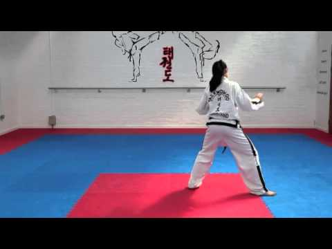Hwa Rang Tul and basic movements for grading to 1st kup Image 1