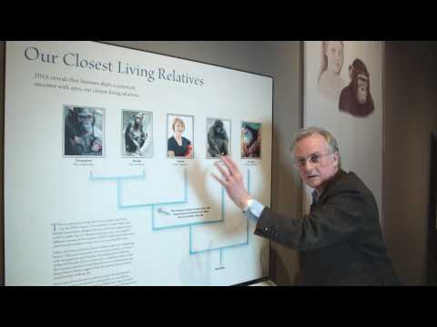 Richard Dawkins: Why are there still Chimpanzees? - Nebraska Vignettes #2
