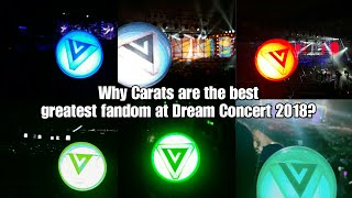 Why Carats are the best greatest fandom at Dream Concert 2018?