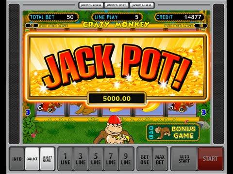 Слото манки лотерея на 8 линий