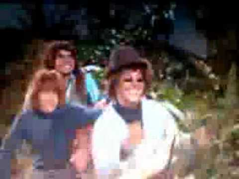 the honey bees  on gilligans island