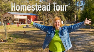 A Tour Of Becky's Homestead Early 2017