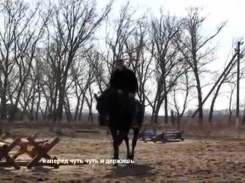 Школа Верховой Езды как правильно поворачивать лошадь