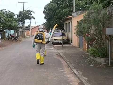 Ações da operação Força-Tarefa já estão sendo realizadas em Araguari
