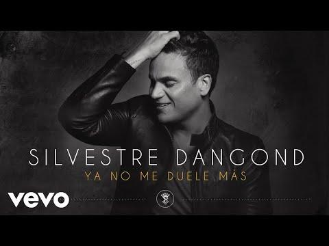 Silvestre Dangond - Ya No Me Duele Más (Cover Audio)