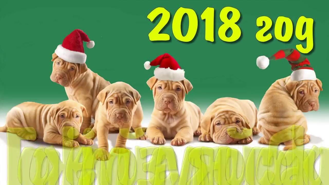 Экономика   Год собаки 2018