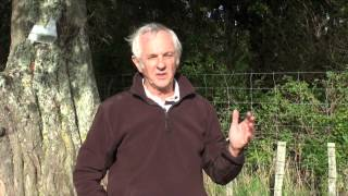 Possum Control Programme-1 million hectares