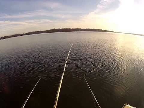 Lake Norman, NC, November 30, 2013. Fishing for Blue Catfish in cold weather !