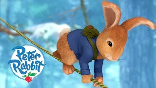 Peter Rabbit - Fun Times in the Treehouse | Cartoons for Kids