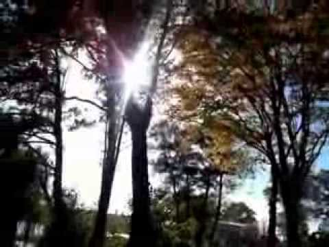 Wędkarstwo Spinningowe!Spacer Jesienny-boczny Trok&wobler.URBANOVICZ FISHING Episode III Cz3