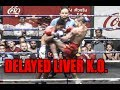 Muay Thai Knockout - DELAYED LIVER K.O.!