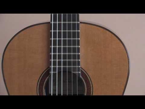 Thames cedar/E. Indian guitar, Raphael Andia playing Manuel de Falla
