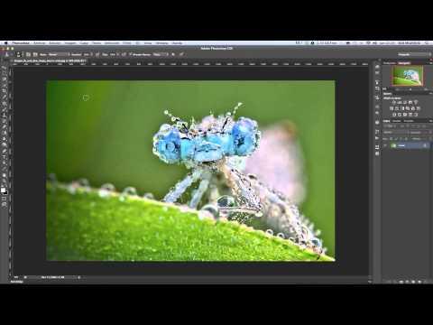 Tutorial 1 Photoshop CS6. Abrir y guardar una imagen.mp4