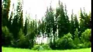 The Dudesons - Extreme Duudsonit - Jukka