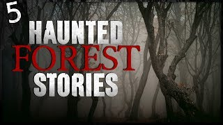 5 REAL Haunted Forest Encounters   Darkness Prevails